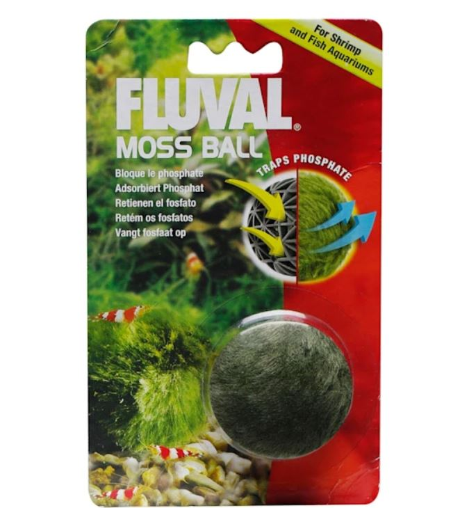 turtle tank moss ball
