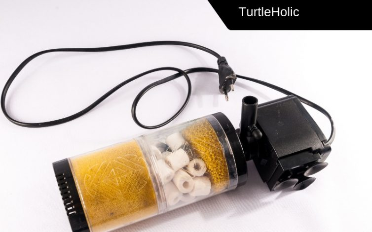 best power filter for turtles content