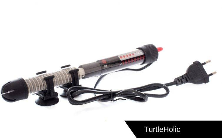 The Best Underwater Heater for Turtles in the World