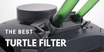 Best Turtle Filter
