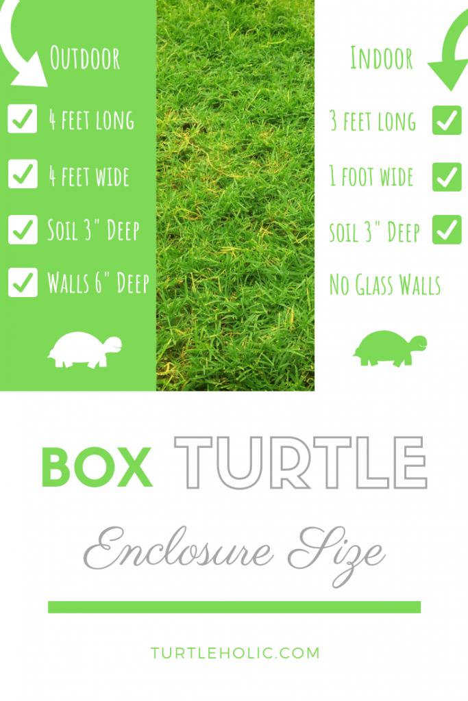 Just What Is The Best Box Turtle Aquarium Size Pinterest