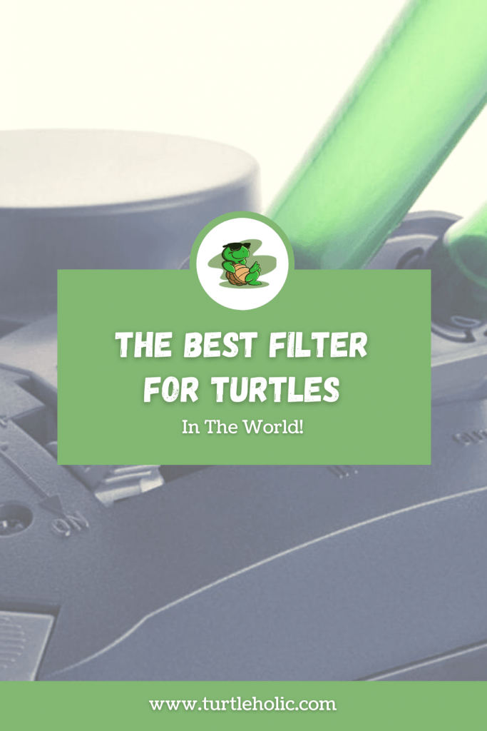 The Best Filter for Turtles in the World Pinterest