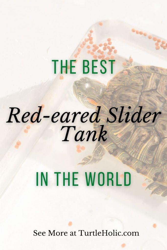 The Best Red-eared Slider Tank in the World Pinterest