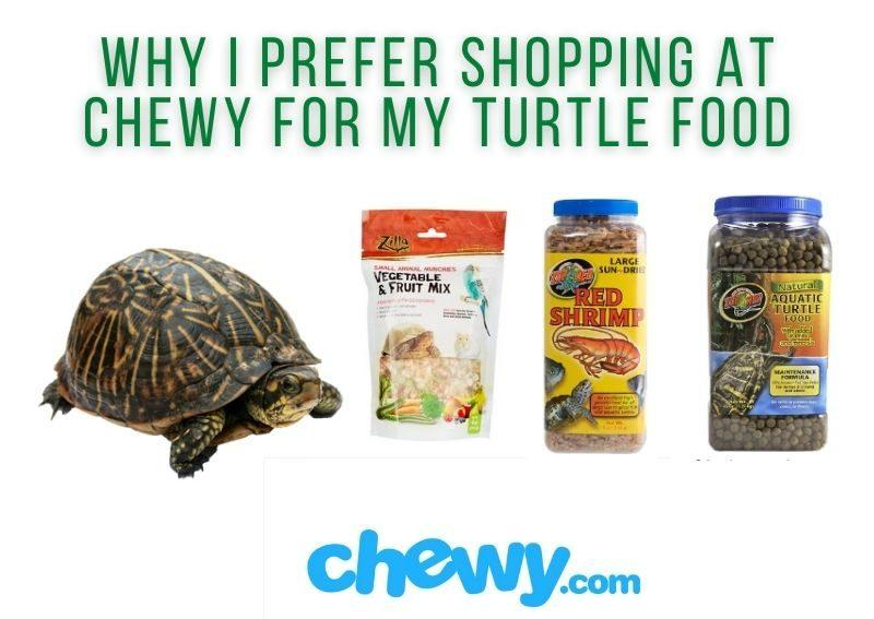 where to buy turtle food online