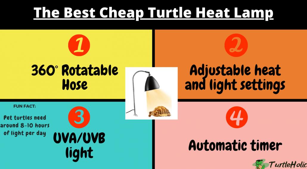turtle heat lamp